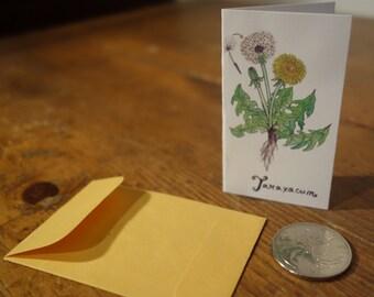 12 x mini Medicinal Plants Postcards