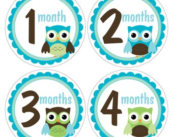 12 Monthly Baby Milestone Waterproof Glossy Stickers - Just Born - Newborn - Weekly stickers available - Design M031-02