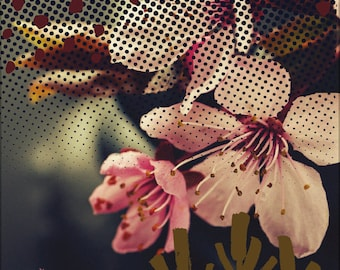 Fête des mères mothers gift Poster Print cherry blossom