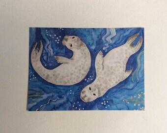 Atlantic seal postcard