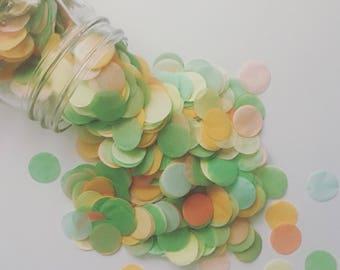 SALE / FROOT MIX / tissue paper confetti / cake table candy bar / confetti toss / pastel decorations / wedding decor / balloon confetti