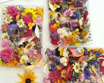 Dried Flower Petals, Wedding Confetti, Real Flowers, Wedding Favors, Flower Girl, , Wedding Decoration, Centerpieces, 2 Boxes or Bags