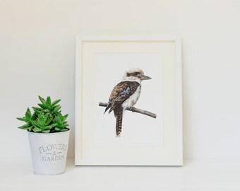 "Kookaburra Print 8x10"" - Australian Bird Art Print - Laughing Kookaburra Fine Art Print"