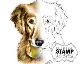 Golden Retriever Dog Digital Stamp | Dog Art Digital Download | Dog Tennis Balls | Digital Scrapbooking | Scrapbook Supplies | Dog Breeds