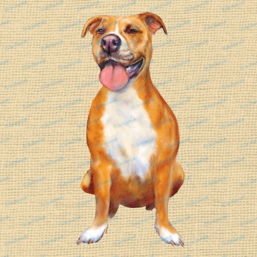Pitbull clipart, dog clipart instant download. Digital watercolor ...