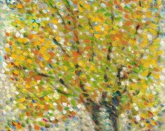 Fine Art Giclee Print: Beech Tree in Autumn, 2016