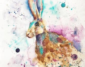 Splashy Hare - print of original watercolour painting