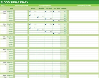 excel blood sugar log