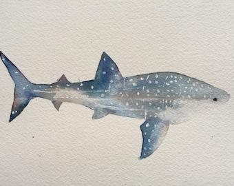 Whale shark original painting illustration