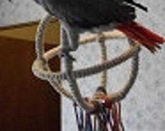 Medium 3 Ring Parrot Orbit Swing