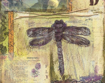 Dragonfly Mixed Media - 6x6, 8x8 and 12x12 Print of Original