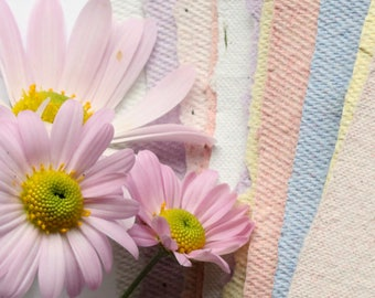 """Thirty Sheets (30) ~ 5.5"""" x 8.5"""" Wildflower Seed Paper Handmade Deckle Edge Stationery"""
