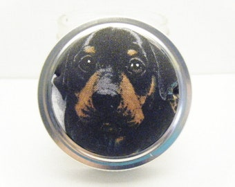 Pin Cushion - Jar - Sewing Kit - Pin Holder - Needle Holder - Sewing Accessory - Puppy Rotweiller Pincushion - Dog - Brown - Tan - Black