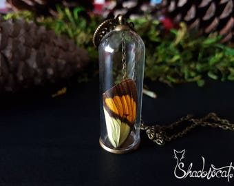 Butterfly wing pendant. Butterfly wing necklace