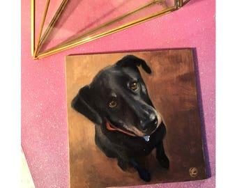 Pet portrait of your pet 4x4