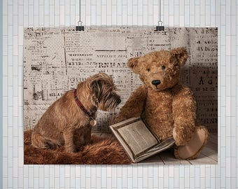 Border Terrier Dog And Teddy Bear Reading a Book : Premium Quality Poster / A4