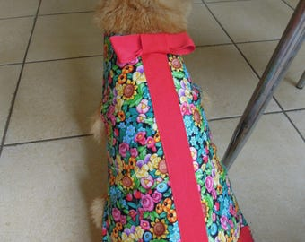 Pet clothing for cats and small dogs: Rainbow and red cotton dress