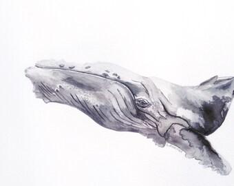 Watercolour Whale Art Print, Whale Art, Beach Decor, Humpback Whale, Whale Nursery, Animal Watercolour