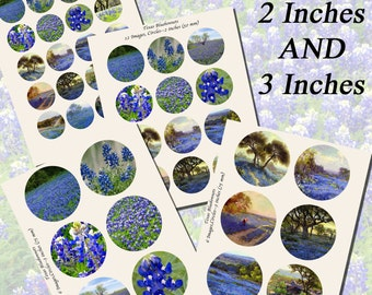 Texas Bluebonnets Printables, EXTRA LARGE CIRCLES, 1.5 inch, 2 inch, and 3 inch circles  (38mm, 50mm, and 75 mm)