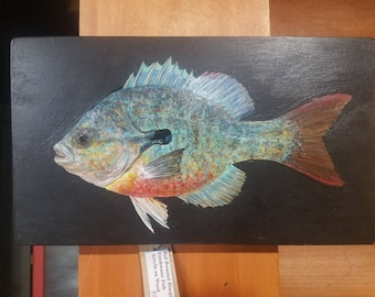 Red Breasted Bluegill Acrylic Painting On Wood - Realistic Fish Painting