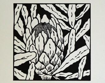 Protea Lino Print