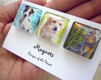 Magnets Square Glass set - Australian Stamp Collection - Cute Dogs