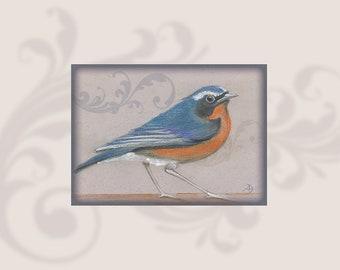 Wall art, Download, Digital art, Soft Pastel colors,Drawing & drafting, Beige digital frame, Orange, Blue,300dpi, Himalayan Bluetail, Bird
