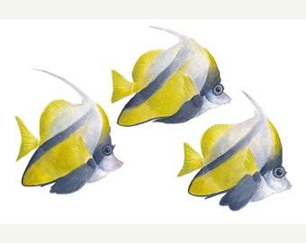 Coral Fish. Original watercolour painting of exotic fish