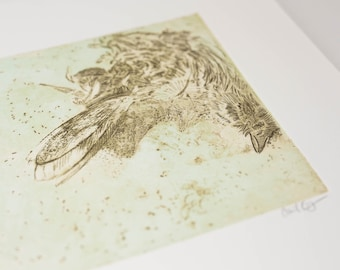 Original Art Etching of Bird