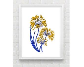 Botanical Flower Illustration Wall Art