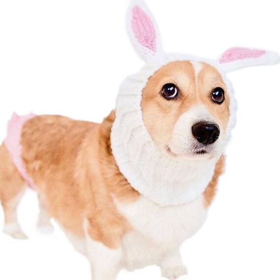 sc 1 st  Etsy & Bunny Rabbit Dog Snood Knit Crochet Dog Hat Dog Costume