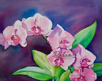 Pink Orchid Original Watercolor by Dilian Deal