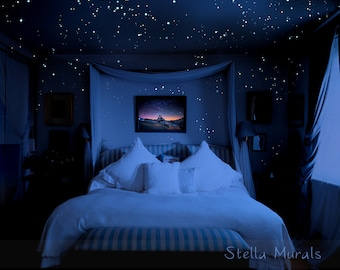 Glow in the Dark Star Stickers | 200 - 1000 Stickers | DIY 3D Glow in Dark Star Ceiling | Super Bright, Realistic Night Sky | Free Shipping