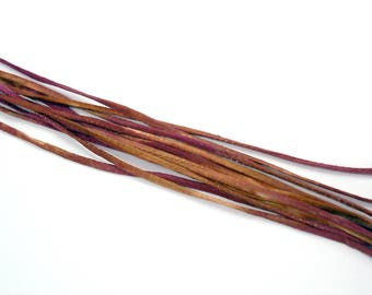 "5PC. CARTNIVAL 2MM Hand Dyed Silk Jewelry Cord//5PC Hand Dyed Silk Cording 1/8"" X 36""//Hand Dyed Silk Jewelry Bracelet/Necklace Cording"