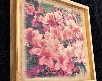 Azalea wood print art