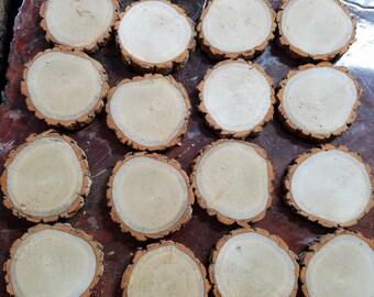 50 - 5 inch sassafras slices