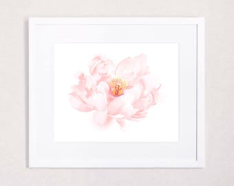 Blush Fading Peony Floral Watercolor Art Print