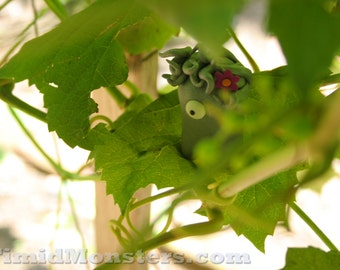 Timid Monsters in the Wild - Glitta - 5x7 Photography Print