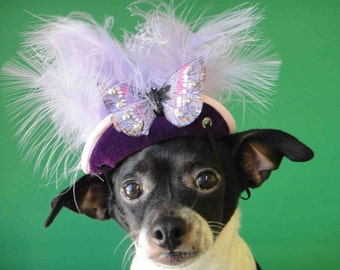 Hat with butterfly for dog or cat