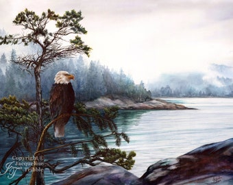 Print - Bald Eagle Watercolor Painting - PNW art, bird painting, eagle art, wildlife art, pacific northwest, Jacqueline Tribble