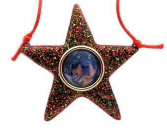 Rottweiler Dog on a Star ~ Hand Crafted Christmas Ornaments