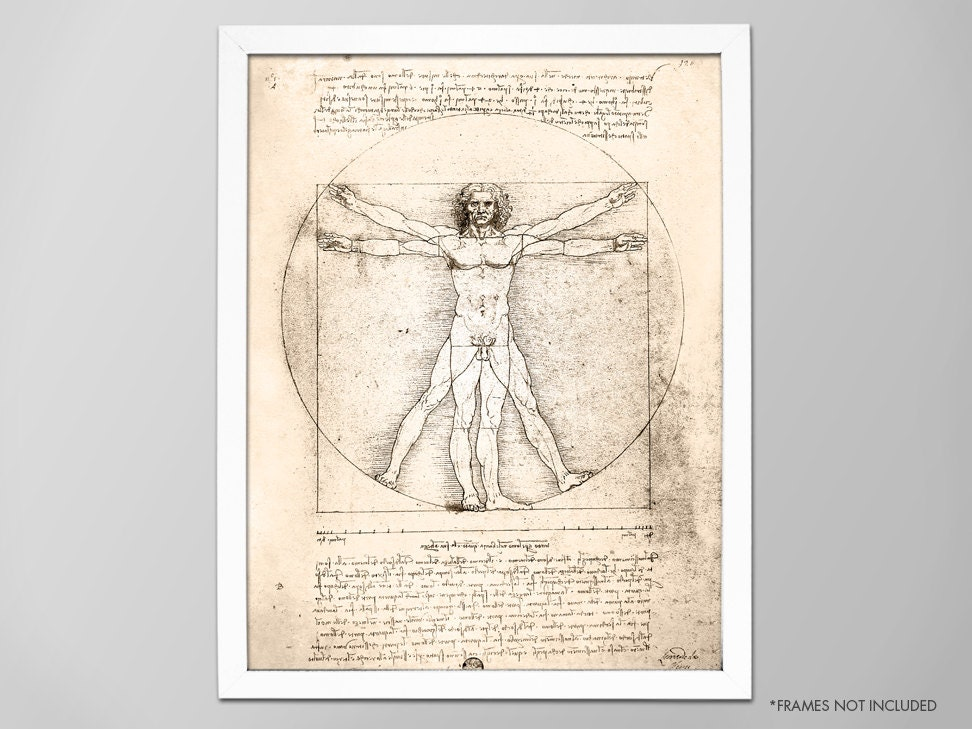 Human Anatomy Art Gallery Human Anatomy Organs Diagram