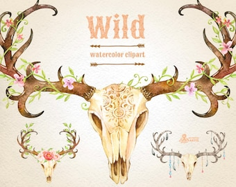 Wild. 3 Watercolor skulls with antlers, hand painted clipart, peonies, floral, invite, country, diy clip art, flowers, feathers, boho deer