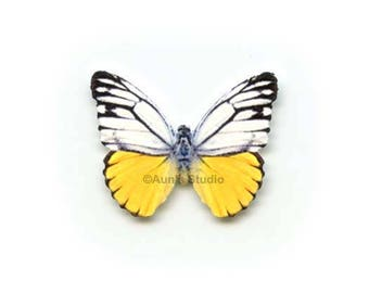 12 Small Paper Butterflies, Realistic 1 inch Paper Butterflies - Yellow and white Butterfly