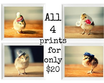 Chicks in Hats Print SALE Baby Animal Photos Birds in Hats 8x10 (4) Nursery Decor Baby Gift