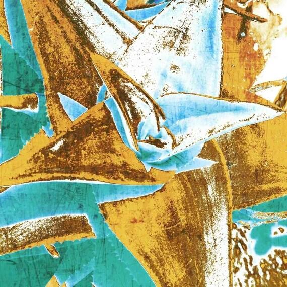 """Aloe Brevifolia. Canvas Print by Irena Orlov 30x30"""""""