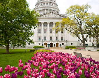 Madison Wisconsin Capitol Building 8x10 Photograph