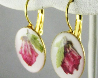 Pink Kalmia, Lever-back Earrings,  Pressed Flower Jewelry, Real Flowers, Resin, (1689)