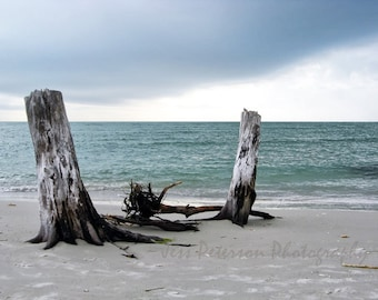 In STOCK Ocean Photos Florida Seascape Print Gray Blue home decor Driftwood tropical beach photos Nautical wall art 8x10 Matted to 11x14