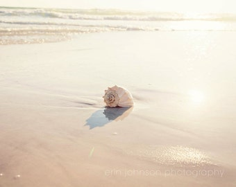 seashell beach landscape photography, seashell art, beach bathroom decor, beach decor, beach cottage decor,